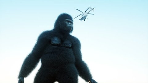 Giant gorilla and helicopter in jungle. Prehistoric animal and monster. Realistic fur and animation. 4K render.