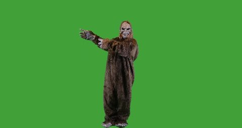 Bigfoot or Sasquatch creature looking and gesturing left on green screen.