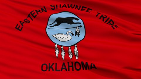 The Eastern Shawnee Tribe Of Oklahoma Indian Flag, Closeup View Realistic Animation Seamless Loop - 10 Seconds Long