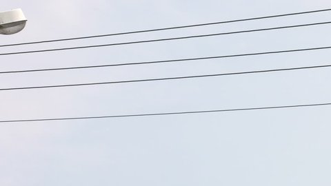 Super Low Voltage Wiring Stock Video Footage 4K And Hd Video Clips Wiring Digital Resources Sapredefiancerspsorg