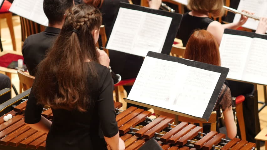 Rear view of young female musician playing xylophone in symphony orchestra, Full HD shot