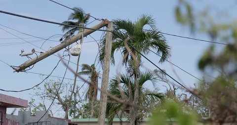 Hurricane Maria is regarded as being the worst natural disaster on record to affect Dominica and Puerto Rico.