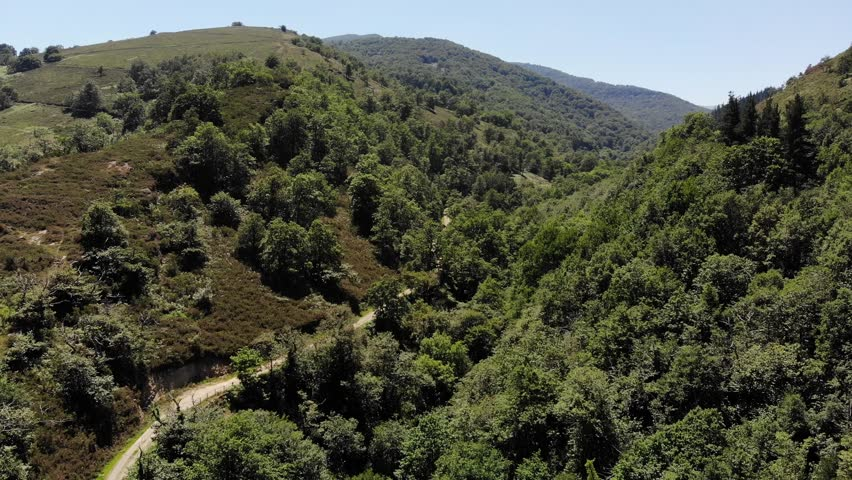 Aerial view of mountains with trees, north of Spain. Rocky mountains with vegetation, nature, clear sky, field, grass, plants, valley, hills, summer, sun, bushes, grass, huge forest. Spain by drone 4k   Shutterstock HD Video #1015644196