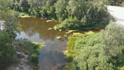 The river bed is a top view from the drone. The quadrocopter is flying over the river in the forest. Nature, green vegetation on the banks of the river. green reeds and trees. Small pond,flows. Summer
