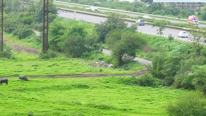 Traffic on the Mumbai-Pune Expressway