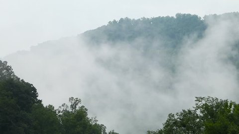 Slowing fog rolling through the trees in the Appalachian mountain range.