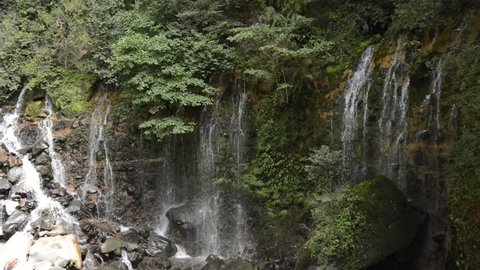 Waterfall of spring water among green plants growth cliff in Kagoshima