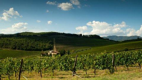 Rows of green vineyards in Chianti region on sunny day. Summer season, Tuscany. Timelapse. 4K UHD Video, Nikon D300