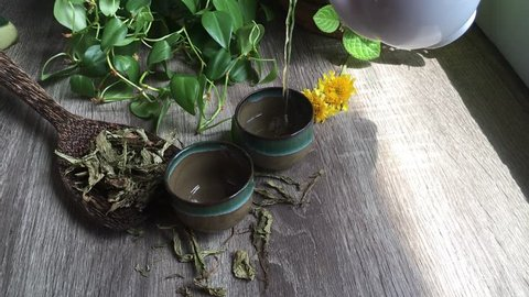 Hot tea cup from Stevia herbs video clips