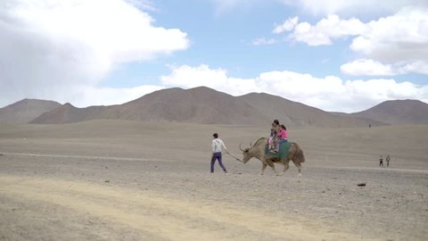 unidentified people riding yak in a mountain scenario. Central asia, pamir valley. no color correction. flat profile cinema. slow motion