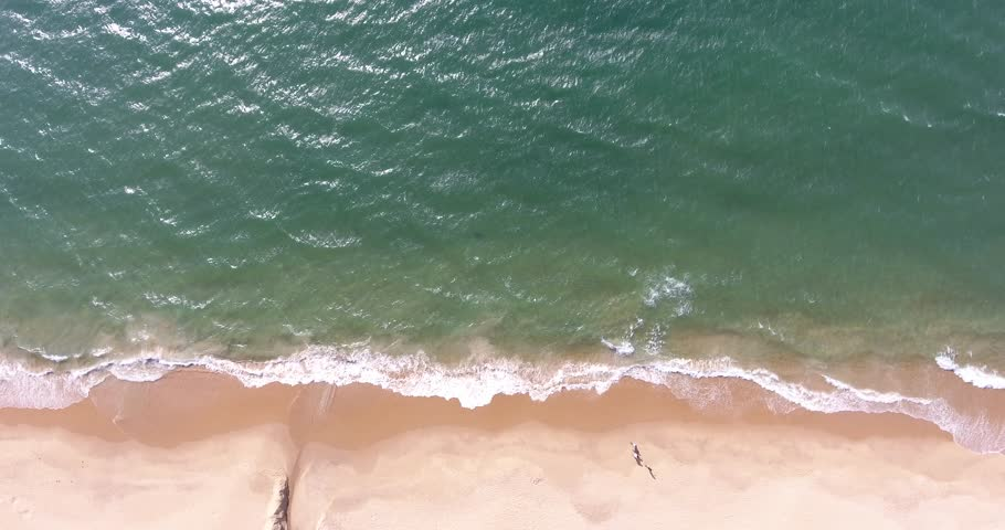 The Sea and the Beach    Shutterstock HD Video #1016610856