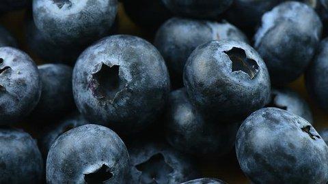 fresh Blueberries rotation