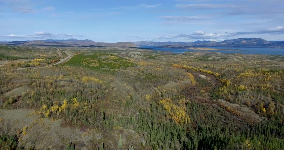 Cinematic Slow Rising Aerial View of a beautiful Lake Scene in the Yukon Territory, Canada. Beautiful Fall colors!