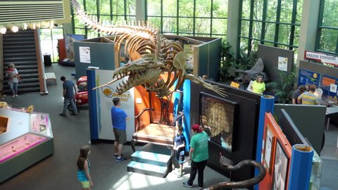 JACKSON, MISSISSIPPI / USA - JULY 2018: The MDWFP Museum of Natural Science in Jackson, Mississippi, United States. People, families, children enjoy their visit