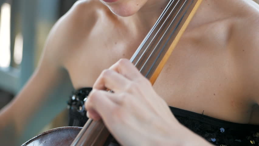 Girl plays the cello at the wedding celebration | Shutterstock HD Video #1017170506