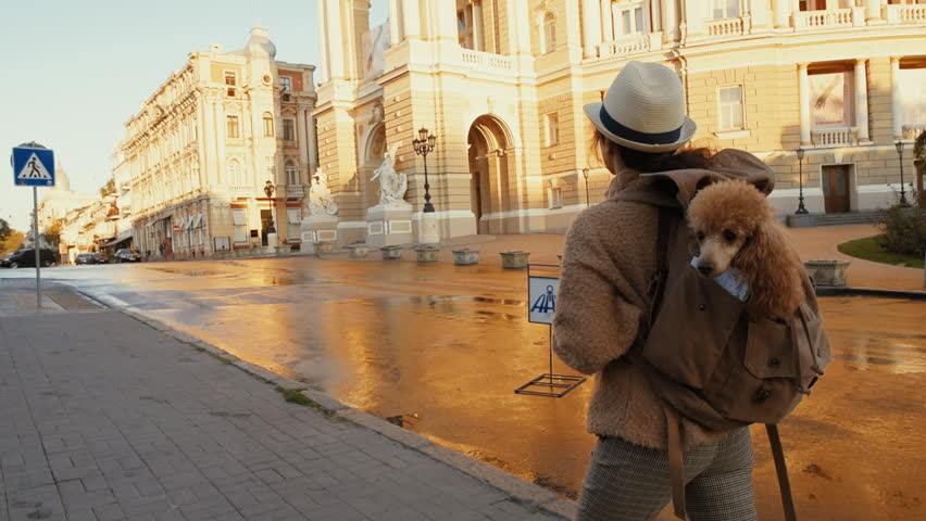 Woman traveler with backpack holding dog examines architectural monument .  Odessa Opera Theatre. | Shutterstock HD Video #1018179346