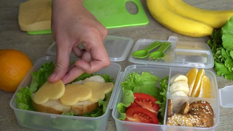 Mother putting food in lunch box. Packing healthy lunches for child care, preschool, kinder or school