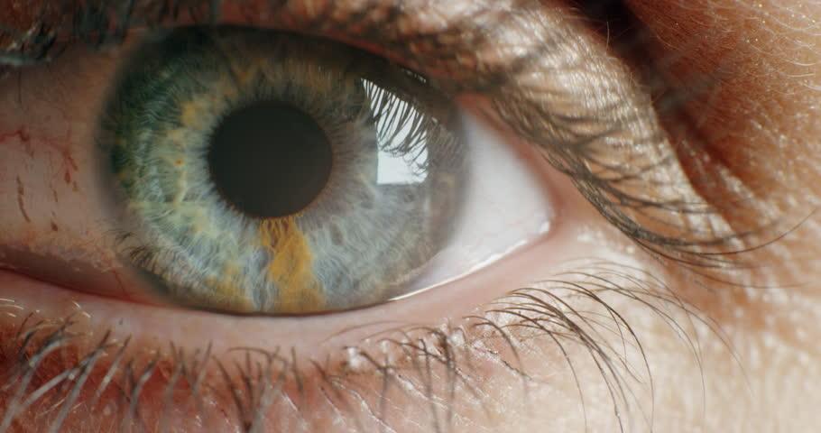 Close up Macro Eye Opening Stock Footage Video (100% Royalty-free)  1018745086 | Shutterstock