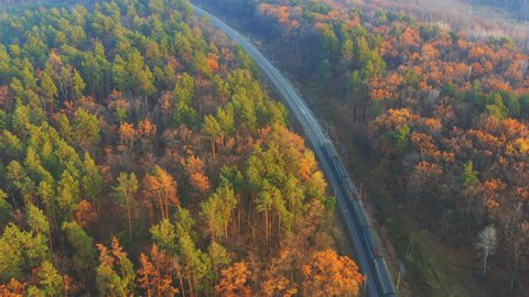 Aerial following shot of a commuter train moves on the autumn forest at sunset