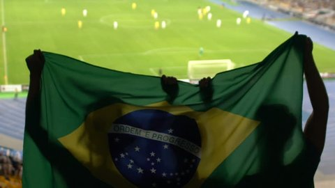 Soccer fans with Brazilian flag jumping in stands, cheering for favorite team