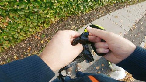 Man picks up dog poo after his pet on sidewalk