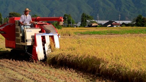 NAGANO PREFECTURE, JAPAN - SEPTEMBER, 2014: A farmer harvesting rice on a field using tractor.