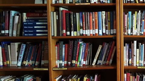 TUCSON, AZ, USA - 11/14/18 - A pan across books on a library shelf