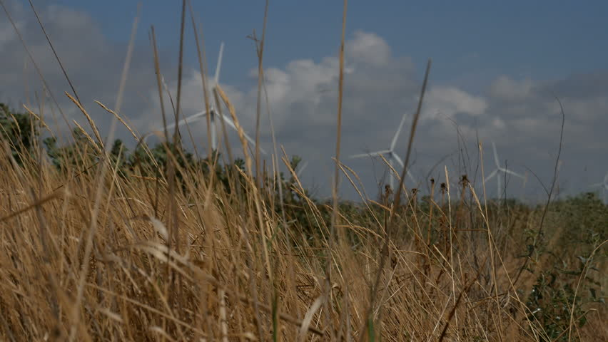 Defocused wind turbines background of cloudy sky. in the foreground in the wind swaying dry grass