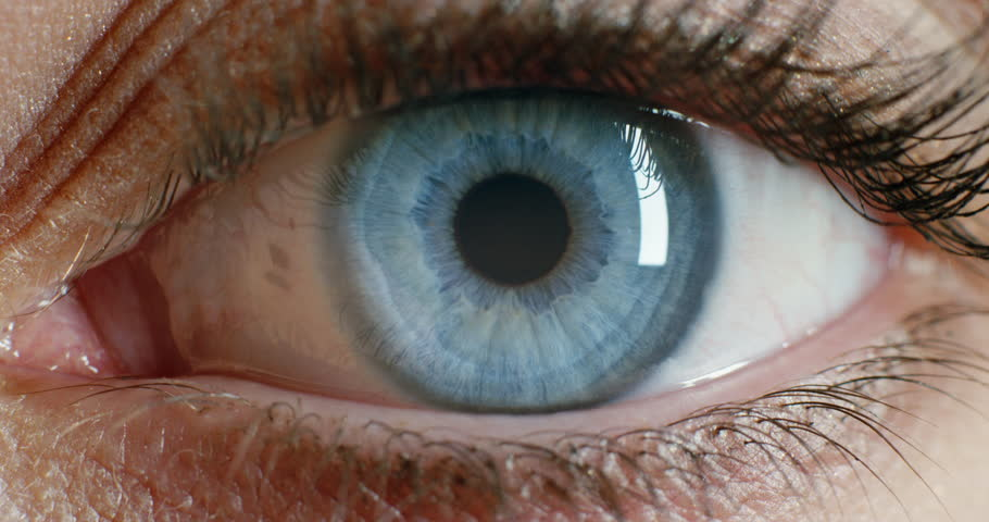 Close up macro eye opening beautiful blue iris natural beauty vision concept 4k footage shot on Red Epic Dragon | Shutterstock HD Video #1020306856