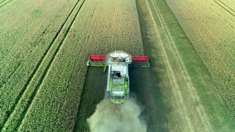 Harvesting on the farmland Combine Agriculture Machinery Technology Food Modification Crop Farming Concept