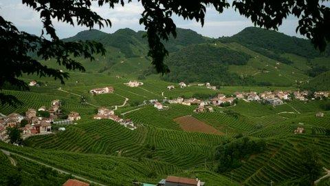 View from the Prosecco wine hill - Conegliano Valdobbiadene