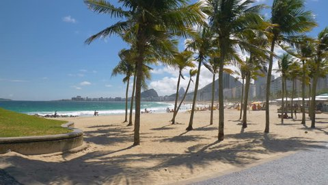 Palms on Copacabana with people relaxing on the beach, Rio de Janeiro