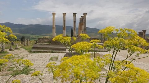 The old city of Volubilis built by the ancien greeks in Morocco