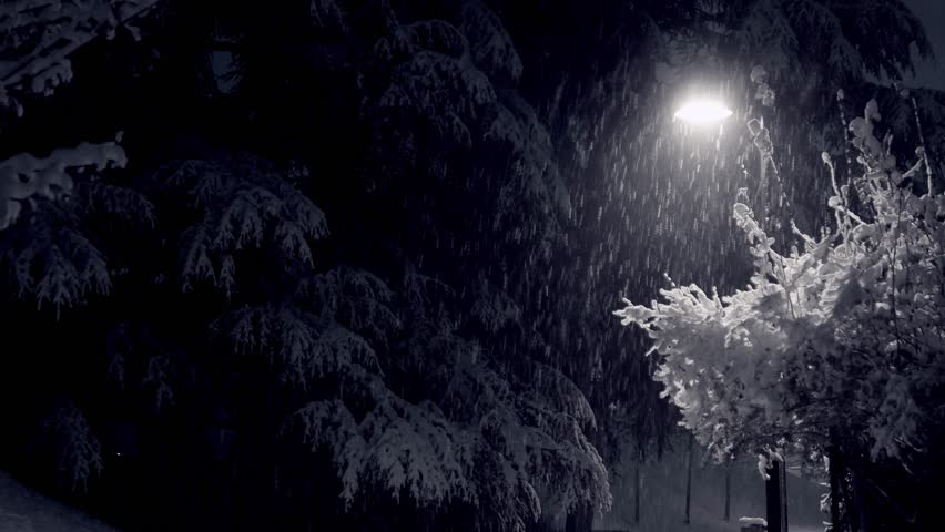 Winter landscape with lamp and snow falling at night. | Shutterstock HD Video #1021971586