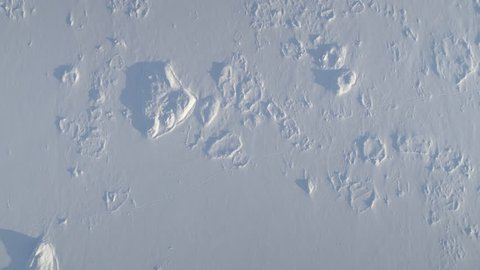 Antarctic Snow Covered Surface Top Down Aerial View. White Ice Desert Polar Surreal High Flight Drone Shot. Antarctica Wilderness Nature Landscape Copter Fly Footage Shot in 4K (UHD)