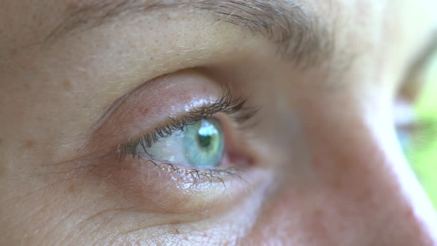 Closeup eye of caucasian blonde woman. Portrait of young woman. Caucasian girl face background, close up eyes | Shutterstock HD Video #1022430286