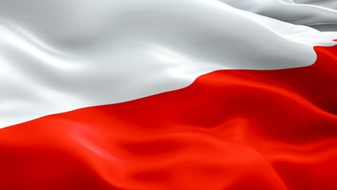 Poland waving flag. National 3d Polish flag waving. Sign of Poland seamless loop animation. Polish flag HD resolution Background. Poland flag Closeup 1080p Full HD video for presentation
