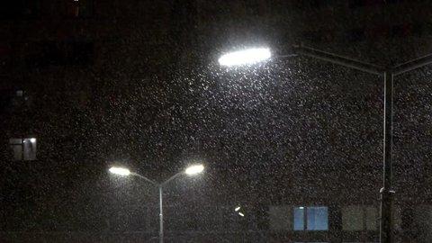 Shines a street lamp. Snow falls at night. Night empty street in winter.