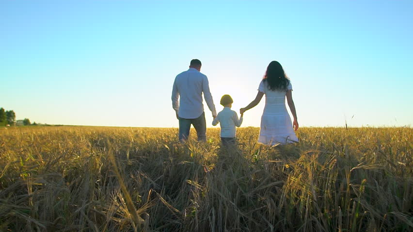 Happy family outdoors walking on wheat field with little boy. Mother, father, son child having fun on summer day, enjoying nature together. health love travel summertime happy holiday happiness sunset | Shutterstock HD Video #1023362656