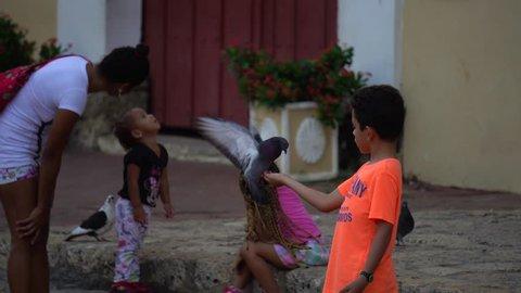 CARTAGENA, COLOMBIA - NOVEMBER 2018: Young boy hand feeding pigeon