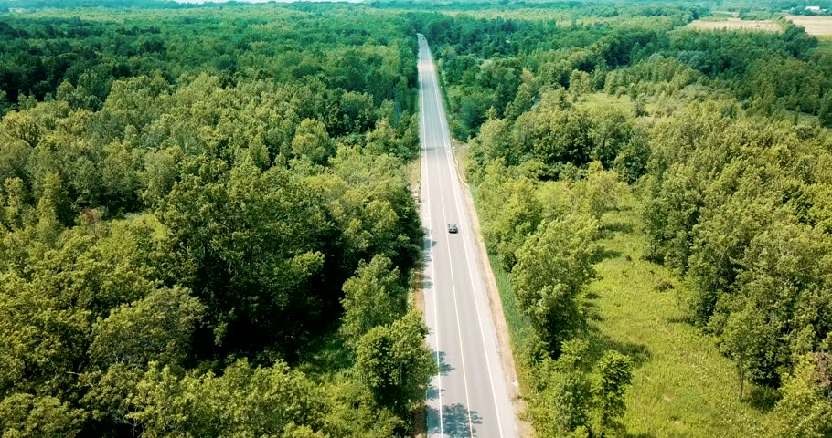 Wide shot aerial drone footage tracking a sedan car cruising on an empty road surrounded by a beautiful large forest and river. | Shutterstock HD Video #1023881146
