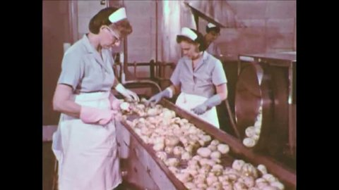 CIRCA 1960s - A potato chip factory in this 1960's industrial film.