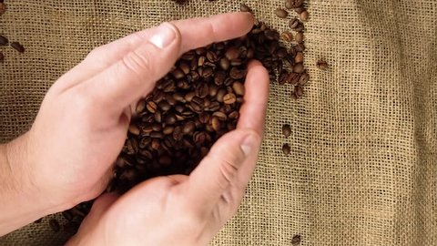 Coffee grains are poured from the palm, top view