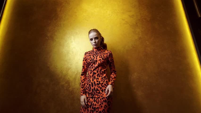 Cute Fashion Model Posing On A Gold Background. Woman In Orange Black Dress.   Shutterstock HD Video #1024436456