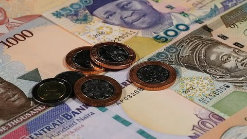 Nigeria Naira Notes and Coins Stock Footage Video (100