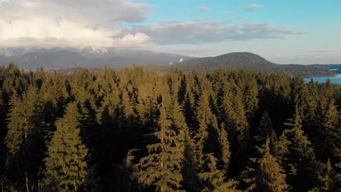Aerial footage of Vancouver from North Vancouver directly over the forest looking towards Deep Cove.