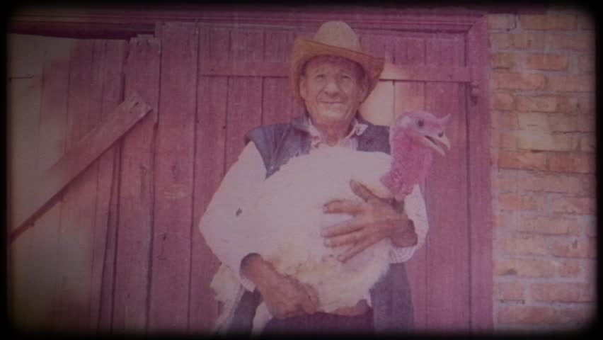 A farmer in a straw hat holds a big white turkey in his hands. Video archive. Retro. Vintage. Farm animals. Raising animals for meat. Agriculture. Organic food. Ranch. Not vegetarianism, but meat | Shutterstock HD Video #1025818976