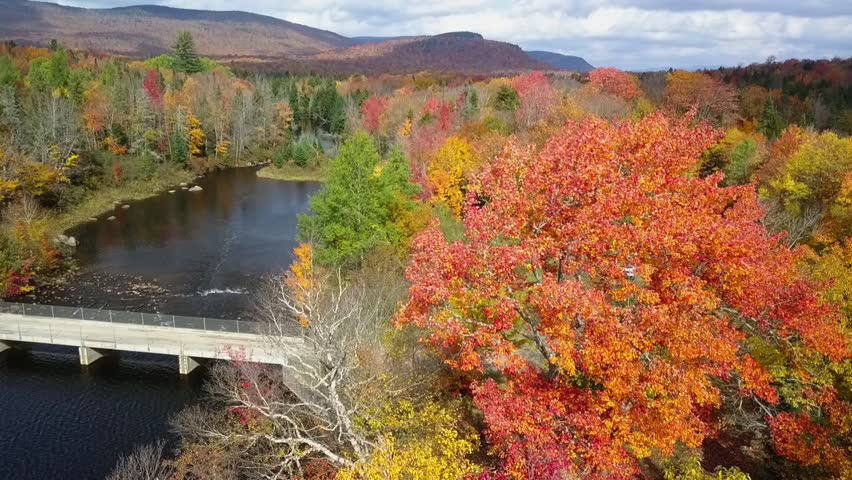 Aerial view of a lake during autumn next to a campground | Shutterstock HD Video #1025940236