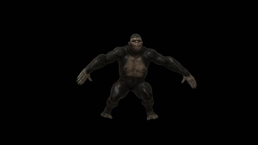 Gorilla Funny Hip Hop Street Dance 6 ,Realistic 3D Gorillas funny Hip-Hop dancing -VJ show, party, music clip, ringtone, website, screen saver, dvd menu, Full HD PNG+Alpha transparent background