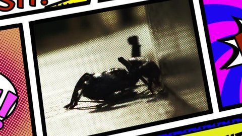 Inside a panel from a comic book page layout: a scary scorpion coming close.